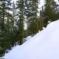 Those willing to push themselves can leave the trail and head toward the peak of Christie Hill.- Christie Hill Snowshoe