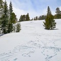 The nearby peak makes this a popular area with backcountry skiers.- Red Lake / Forestdale Road