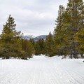 Rated for intermediate-level skiers, the trail climbs gradually through gentle rolling terrain.- Secret Meadow