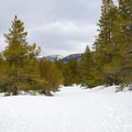The downhill return to the yurt is a fun descent to end the trail.- Secret Meadow