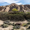View of the mesa behind China Ranch.- China Ranch Date Farm
