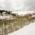 A large, beautiful aspen grove at the base of Mount Raymond.- Mount Raymond Backcountry Skiing