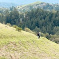 Hikers share the trails in Russian Ridge Open Space Preserve.- Russian Ridge Open Space Preserve
