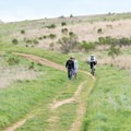 Hikers and mountain bikers share the trails in Russian Ridge Open Space Preserve.- Russian Ridge Open Space Preserve
