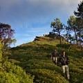 Viewpoint along the caminata.- Sierra Norte of Oaxaca