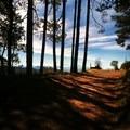 Road from Caujimoloyas. Photo by Kira Richards.- Sierra Norte of Oaxaca
