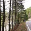 Paved section from Celano to Ovindoli.- Celano, Ovindoli + Aielli Mountain Biking Loop