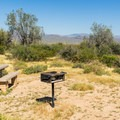 A typical tent site has a grill and table.- Ironwood Tent Sites