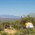 Camping in the Ironwood Tent Sites.- Ironwood Tent Sites