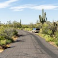 The road through the Ironwood sites.- Ironwood Tent Sites