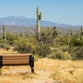 A great spot to enjoy the view.- Ironwood Tent Sites
