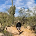 Walking among the saguaros.- Cat Peaks Trail