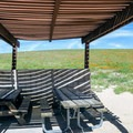 Enjoy a brief respite of shade at the picnic area near the park visitor center.- Antelope Valley Poppy Reserve