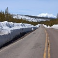 High snow banks along the road are evidence of the mighty plowing effort by road crews.- Grand Loop + West Yellowstone Tour