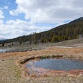 Terrace Springs.- Grand Loop + West Yellowstone Tour