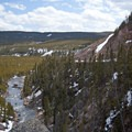 The Gibbon River has steadily cut through the rock to form a steep canyon.- Grand Loop + West Yellowstone Tour