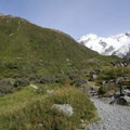 The junction of the Mueller Hut Trail and the spur to Kea Point.- Mueller Hut Route