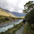 The trail on the north side of the West Matukituki River.- Rob Roy Glacier Trail