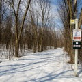 The four trails are nicely groomed.- Cap-St-Jacques Nature Park