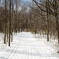There are nice tracks to accommodate skiers of all levels.- Cap-St-Jacques Nature Park