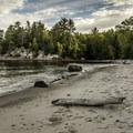 Mosquito Beach.- Lakeshore-North Country Trail: Miners Beach to Beaver Creek