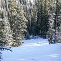 Descending toward the Aquaduct.- Berthoud Pass Ski Area