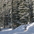 The exit to parking lot.- Berthoud Pass Ski Area