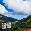 The maintained trail ends at the Pali Overlook. The trail to K2 begins through the brush to the right of the signs and is for experienced hikers only.- Konahuanui Summit / K2 via Pu'u Ohia