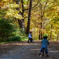 The park roads are closed to vehicles after Labor Day, which means it's a great place to bring the kids and bikes.- Lake Shaftsbury State Park