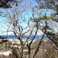 Atlantic Ocean from the Red Trail.- Crane Beach + Crane Wildlife Refuge