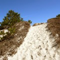 Steep dunes along the Red Trail.- Crane Beach + Crane Wildlife Refuge