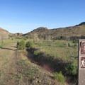 Watch for trail posts as you walk on the heavily braided portions of the Barber Peak Loop.- Barber Peak Loop