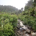 A stream near the Heaphy Track.- New Zealand Great Walks: Heaphy Track