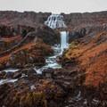 Dynjandi (Fjallfoss) emerging from a high cliff.- Dynjandi (Fjallfoss)