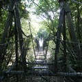 The most primitive suspension bridge on the Heaphy Track.- New Zealand Great Walks: Heaphy Track