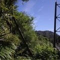 This suspension bridge, just before Lewis Hut, is the longest in New Zealand.- New Zealand Great Walks: Heaphy Track