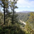 Ascending the Heaphy Track to Mackay Downs.- New Zealand Great Walks: Heaphy Track