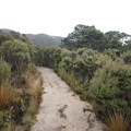 The Heaphy Track.- New Zealand Great Walks: Heaphy Track