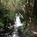 A waterfall near Perry Saddle.- New Zealand Great Walks: Heaphy Track