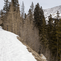Typical views along the snowy road.- McCullough Gulch