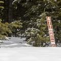 Trail 477 sign.- McCullough Gulch