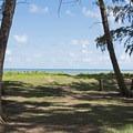 Shaded grassy area south of the bay.- Kahana Bay Beach