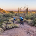 Mountain bikes on a section of the Pass Mountain Trail.- Pass Mountain Loop Hike
