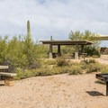 There are dozens of picnic spots in the park.- Usery Mountain Regional Park