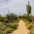 One of the many trails in the park. This one is ADA accessible.- Usery Mountain Regional Park