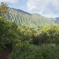 Looking back at the Ko'olau Mountains. - Pu'u Ma'eli'eli Trail