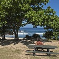 Picnic tables at the western beach.- Sharks Cove