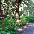 Signs mark some junctions along the trail.- Oregon Coast Trail: Arch Cape to Short Sand Beach