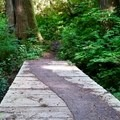 There are several bridge crossings along the hike.- Oregon Coast Trail: Arch Cape to Short Sand Beach
