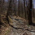 The trail steepens closer to Berlin Mountain.- Berlin Mountain + Taconic Crest Trail